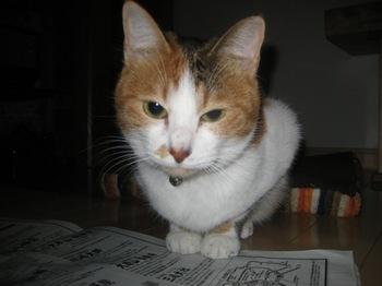 2011Jan4-Lilina2.jpg